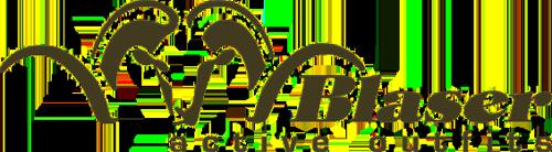 blaser_Logo.png